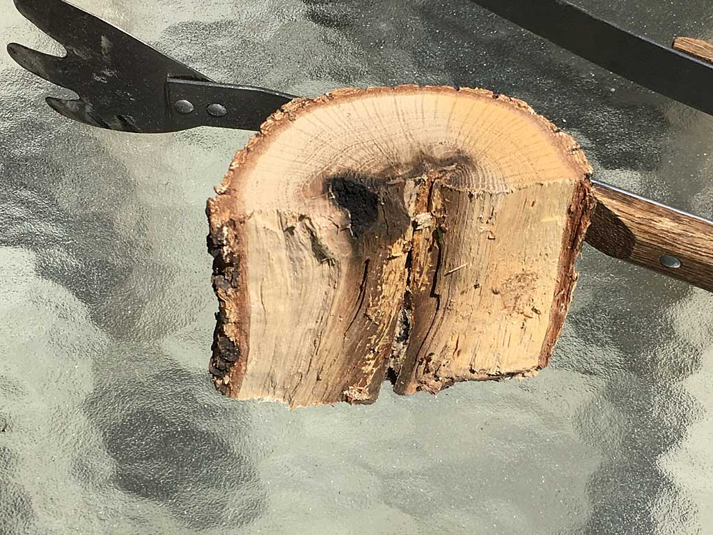 1 chunk of oak wood
