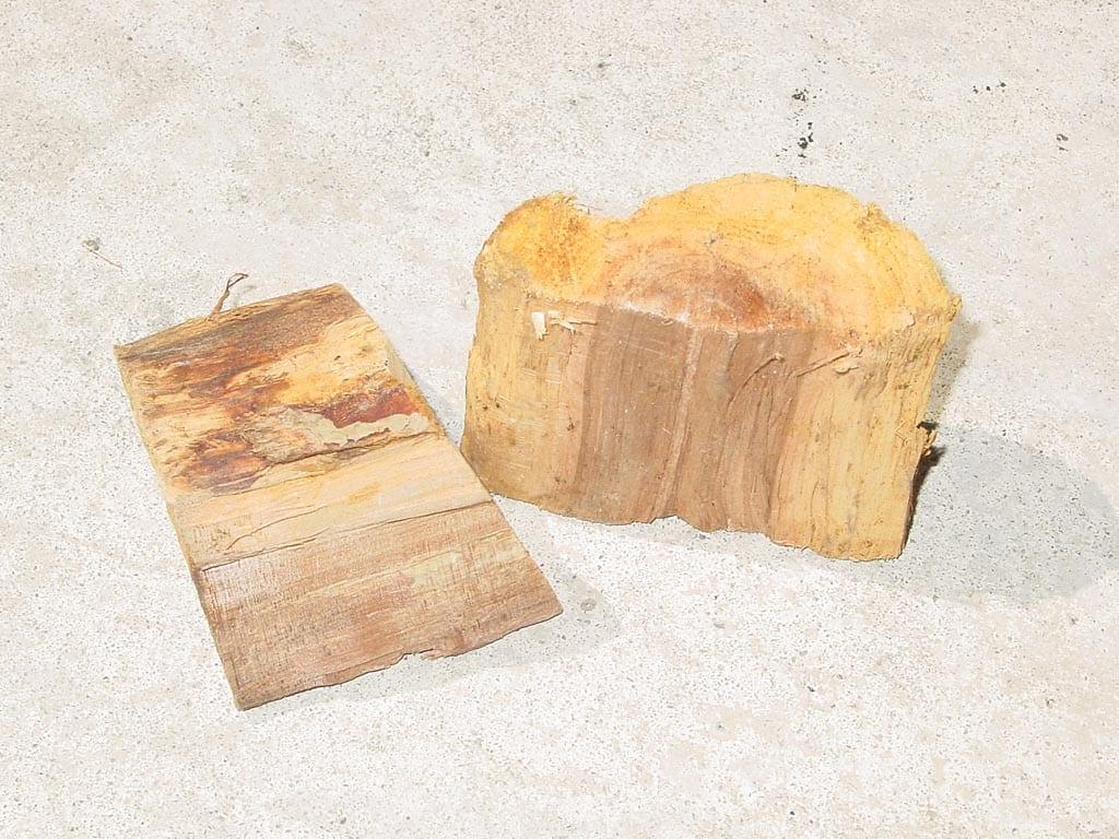 Two chunks of dry apple smoke wood