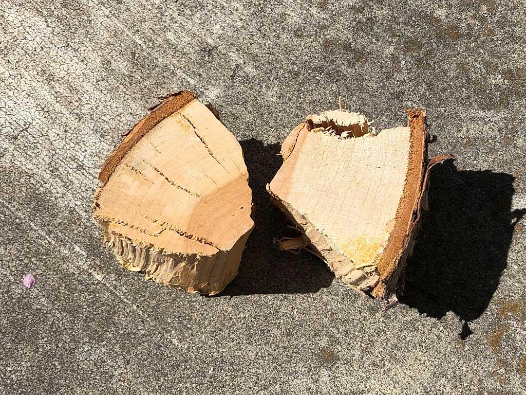 Two fist-sized chunks of dry apple smoke wood