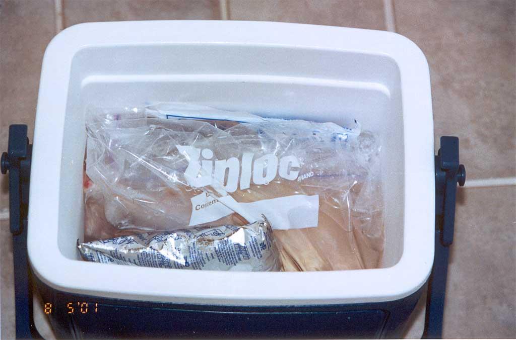Chicken in a cooler