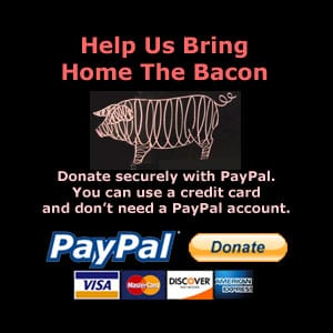 PayPal Donation - Support TVWB!
